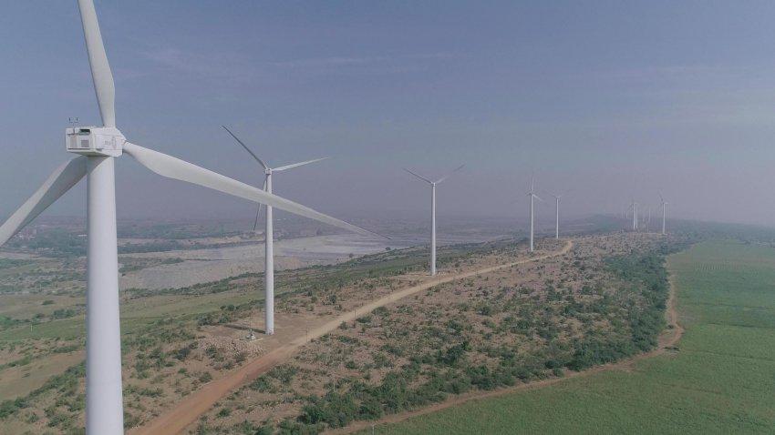 Accendi ECOLOGICA: il contratto che fa felice anche l'ambiente