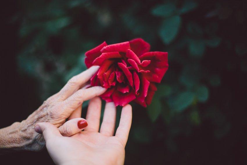 Anziani e giovani convivono in perfetto equilibrio solo in una società che sa guardare lontano.